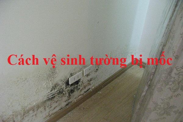 Cách vệ sinh tường bị mốc