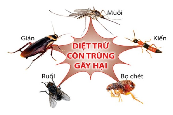 gây hại