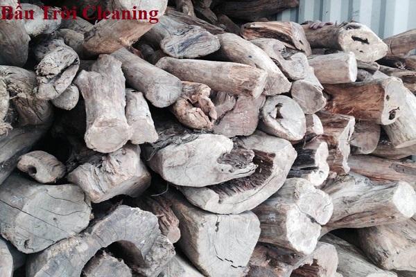 Cách làm túi thơm tại nhà bằng gỗ Bách Xanh